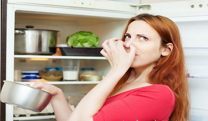 Tủ lạnh có mùi hôi bên trong