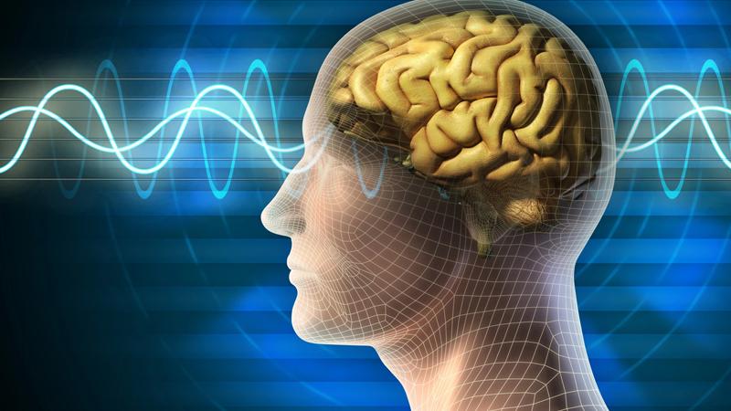 Súp lơ tốt cho não bộ