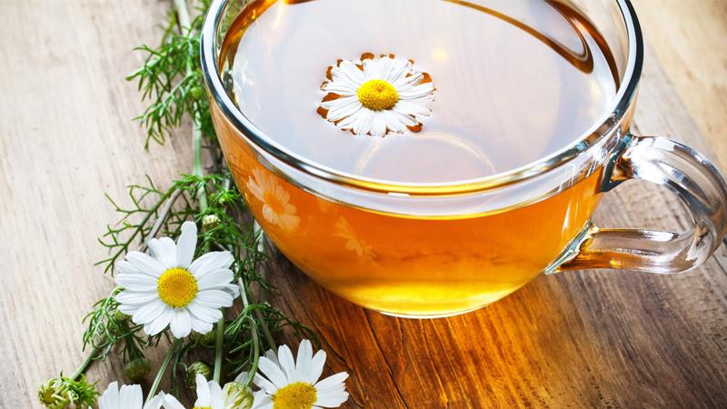Công dụng tuyệt vời của trà hoa cúc đối với sức khoẻ của bé
