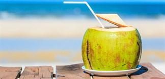 Cẩn thận chuyện uống nước dừa giải khát trong ngày nắng