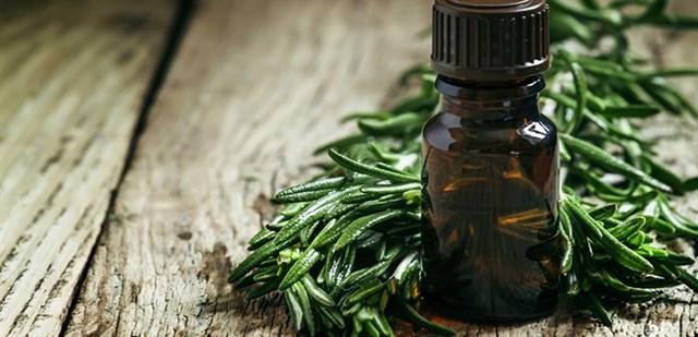 Lợi ích của tinh dầu tràm trà đối với sức khỏe của trẻ nhỏ