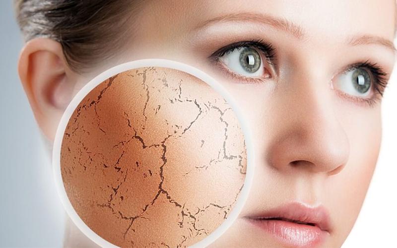 Dầu dừa giúp cung cấp độ ẩm cho da, làm da trắng sáng mềm mượt, trong khi sữa tươi đem lại cho chúng ta làn da láng mịn, mềm mại rất thích hợp với những bạn có làn da khô ráp.