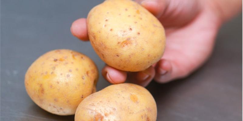 Những công dụng diệu kì của khoai tây đối với sức khỏe