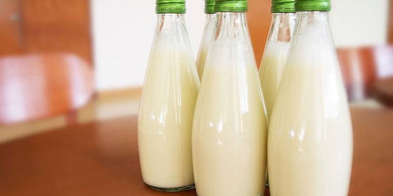 Cách làm sữa hạt dẻ cười tại nhà