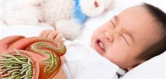 Thực phẩm hỗ trợ diệt giun cho trẻ trong mùa mưa lạnh
