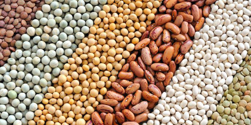 Ngũ cốc là dưỡng chất giúp ngăn ngừa khuyết tật cột sống bẩm sinh cho thai nhi.