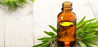 Hiểu đúng và đủ về công dụng của dầu tràm đối với sức khỏe mẹ và bé