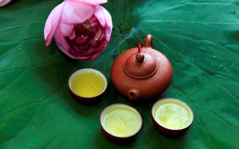 Có khá ít những thực phẩm có khả năng giúp giảm mỡ máu, nhưng trà lá sen lại là một trong số ít đó