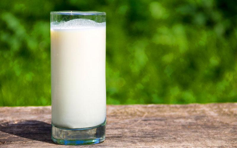Một ly sữa nóng trước khi ngủ mang đến nhiều lợi ích không ngờ