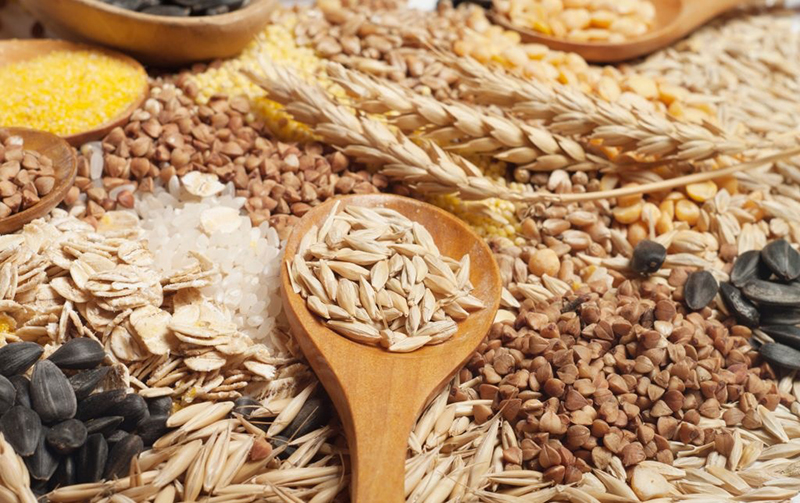 Các loại ngũ cốc chứa rất nhiều dưỡng chất quan trọng và cần thiết cho sự phát triển não bộ của thai nhi. Những vi chất như axit folic và choline sẽ giúp ngăn ngừa dị tật nứt đốt sống và các dị tật ống thần kinh.