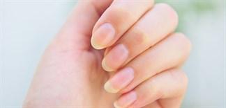 Dưỡng móng tay từ nguyên liệu tự nhiên