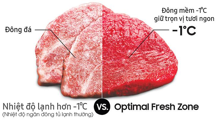 Ngăn cấp đông mềm Optimal Fresh Zone có gì đặc biệt?