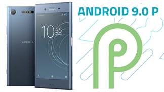 Xperia XZ1, XZ Premium sẽ được lên đời Android 9 Pie từ ngày 26/10
