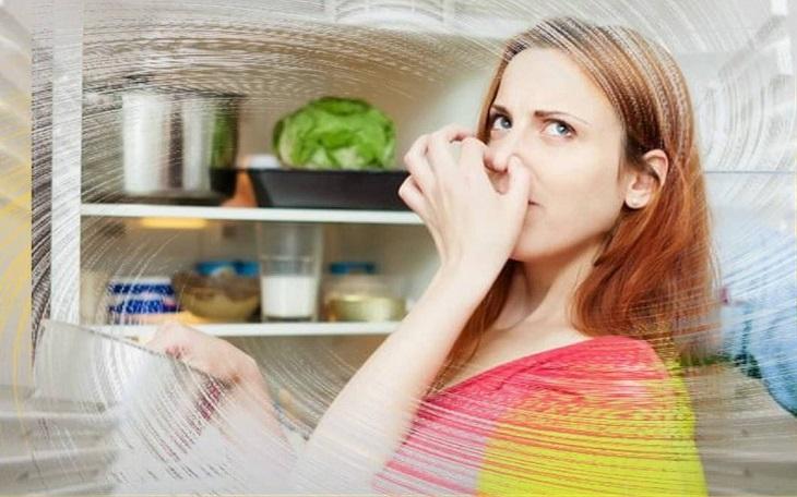Bộ lọc khử mùi 3 lớp