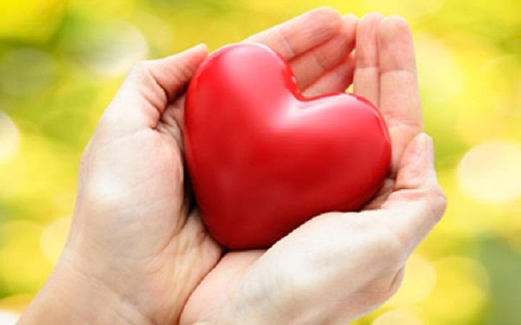 hạt chia giúp hệ tim mạch khỏe
