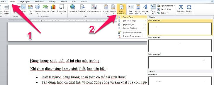 chọn Insert, Page Number, chọn vị trí cần đánh dấu trang
