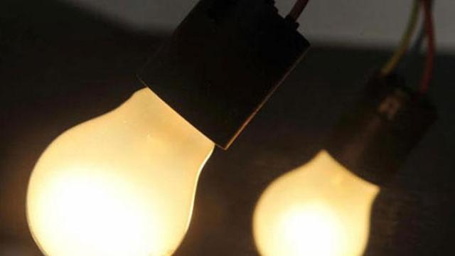 Chiếu ánh đèn để dụ côn trùng chạy ra ngoài