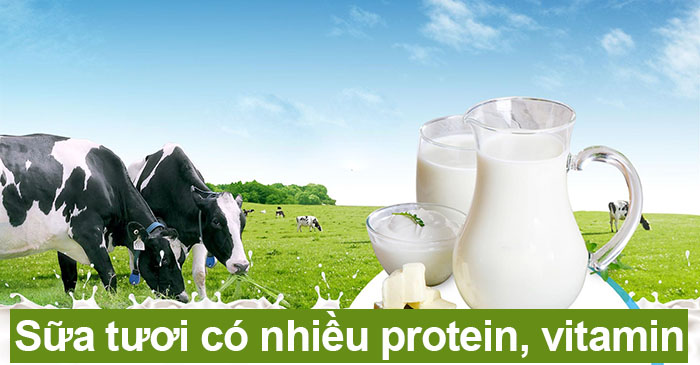 sữa tươi chứa nhiều protein, vitamin tốt cho da