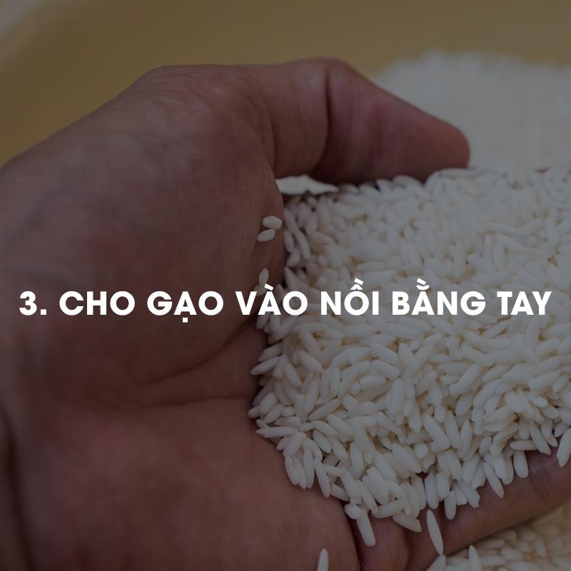 Cho gạo vào nồi bằng tay