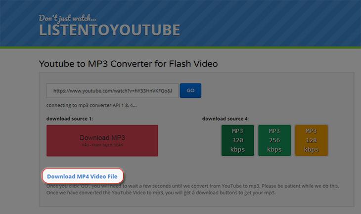 Download MP4 Video File