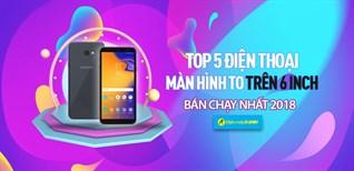 Top 5 điện thoại màn hình to trên 6 inch bán chạy nhất Điện máy XANH năm 2018