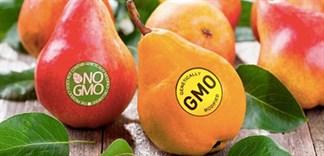 Sự khác biệt của thực phẩm không biến đổi gen và thực phẩm Organic