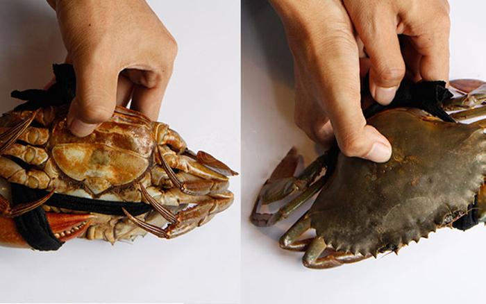 Không sợ chọn nhầm cua ốp với cách chọn cua biển cực ngon thế này