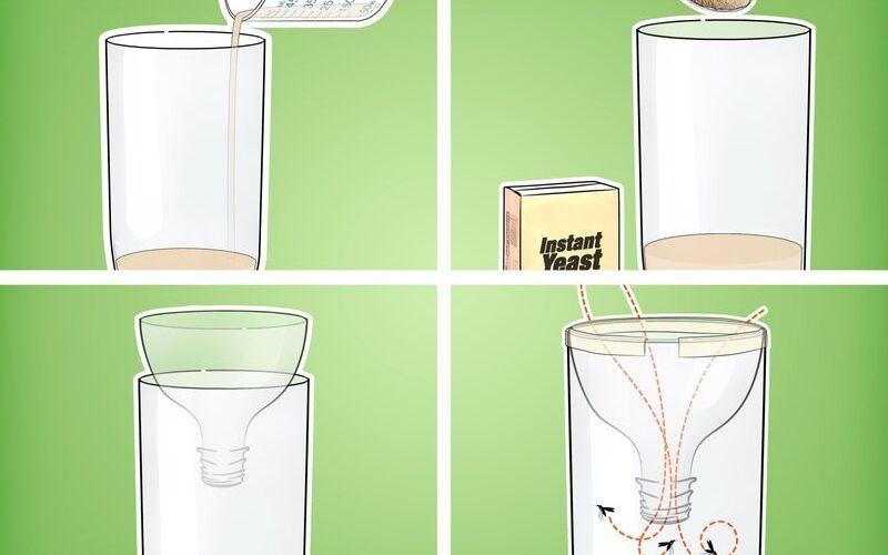Cách đuổi muỗi bằng bẫy