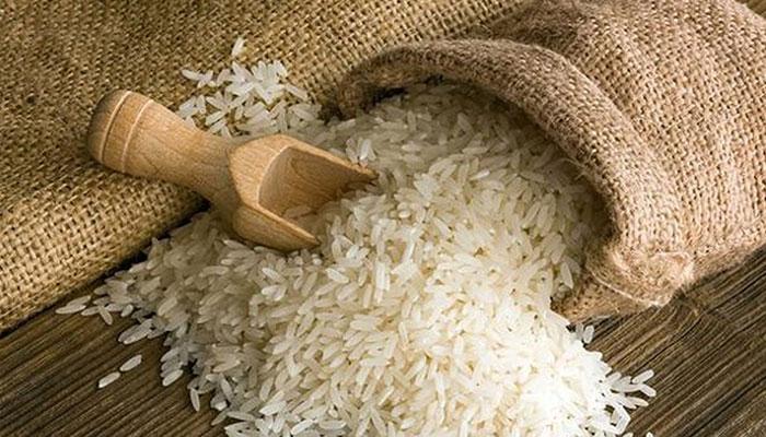 Bí kíp đuổi kiến khỏi thùng gạo an toàn và hiệu quả