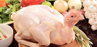 Mách chị em cách chọn gà ngon cho bữa cơm gia đình thêm đậm vị