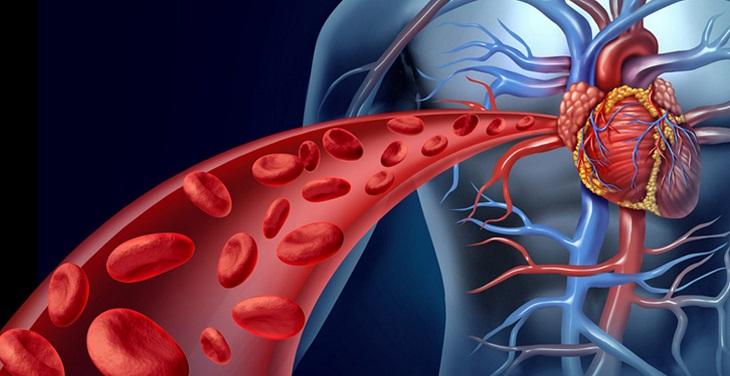 Tránh dùng tinh bột nghệ khi bị bệnh liên quan đến máu