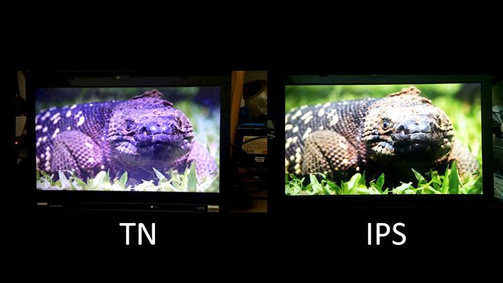 màn hình ips và tn