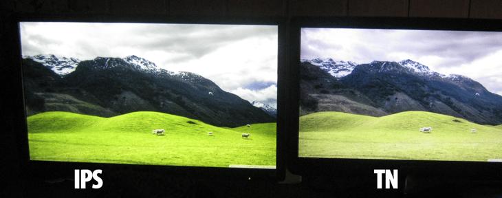Chọn tiêu chuẩn màn hình IPS vì công nghệ này cho ưu điểm cao về màu sắc