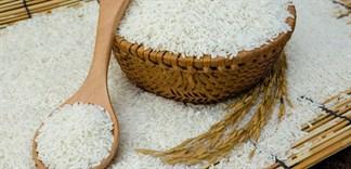Top 5 loại gạo được chọn nhiều nhất cho bữa cơm ngày Tết