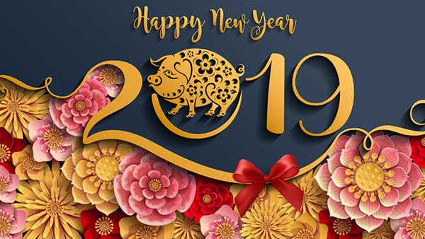 Năm mới 2019