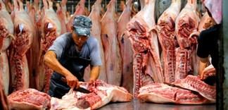 Hiện thành phố Hồ Chí Minh chưa xuất hiện dịch tả lợn châu Phi