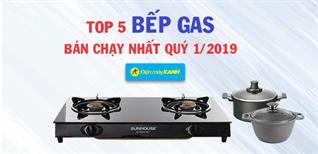 Top 5 bếp gas bán chạy nhất Điện máy XANH quý 1/2019