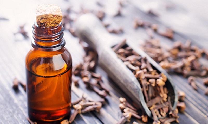 Dùng tinh dầu trà trị bỏng lưỡi