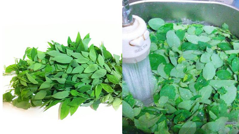 Rau ngót sau khi mua về, bỏ phần thân cứng và lá úa vàng, tuốt lấy lá xanh cho vào rổ, đem đi rửa sạch dưới vòi nước.