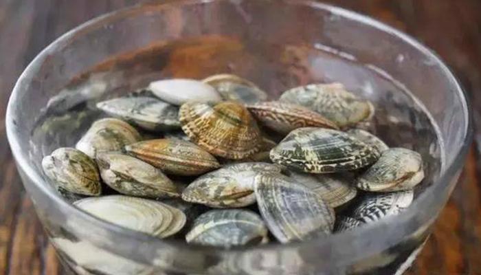 Tuyệt chiêu khiến nghêu nôn sạch cát không còn một hạt trước khi nấu