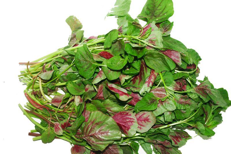 Thành phần dinh dưỡng của rau dền