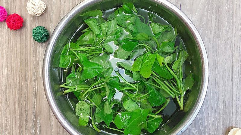 Chọn những bó rau lang tươi ngon, lặt lấy phần non, rửa sơ với nước để loại bỏ phần bụi bẩn, sau đó ngâm vào trong nước muối loãng trong 5 phút để rau lang sạch hơn, rồi rửa lại với nước.