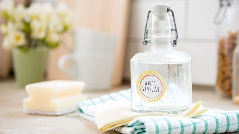 Làm sạch miếng rửa chén với giấm