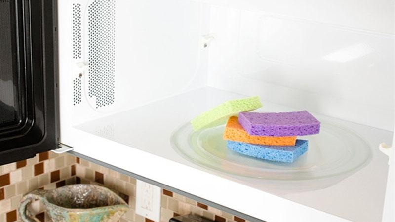 Làm sạch miếng rửa chén bằng lò vi sóng