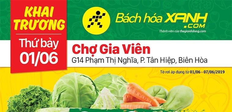 Siêu thị Bách hoá XANH G14 Phạm Thị Nghĩa khai trương 1/06/2019