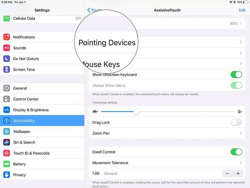 Mẹo sử dụng chuột trên iPad hữu ích cho công việc và giải trí - ảnh 6