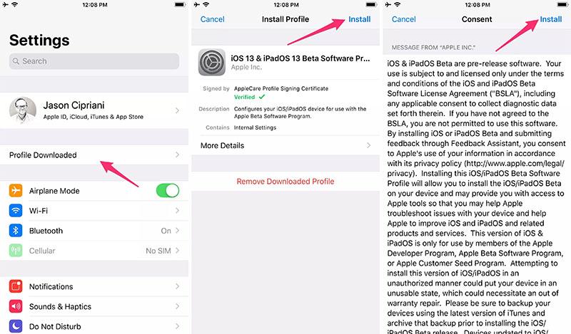Cách tải và cài đặt iOS 13, iPadOS Public Beta ngay bây giờ