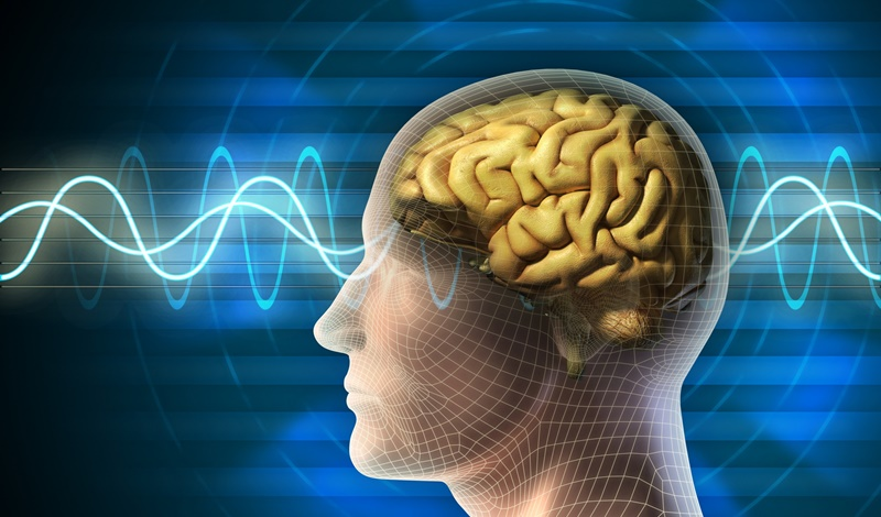 Cải thiện trí não