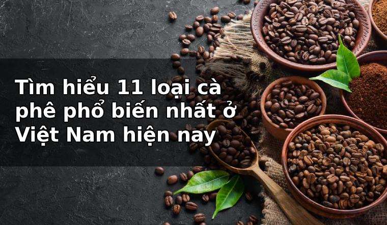 Tìm hiểu 11 loại cà phê phổ biến nhất ở Việt Nam hiện nay