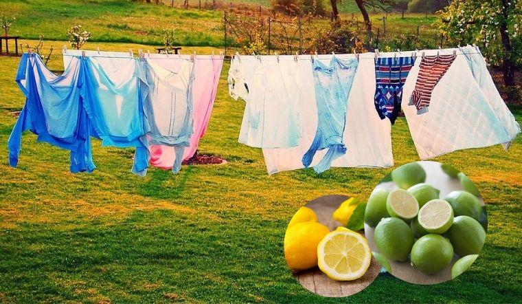 Mẹo tẩy quần áo bằng chanh giúp đồ luôn trắng sáng mà không ra màu